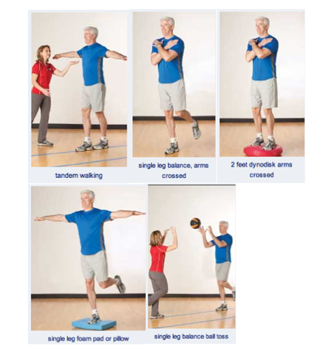 Balance is the key - Riccardo Vaccaro Physiotherapy